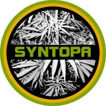Syntopa